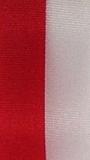 Nationalband Polen - Rot-Weiß